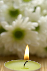 candle and daisy