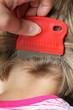 Leinwanddruck Bild - Kopfläuse
