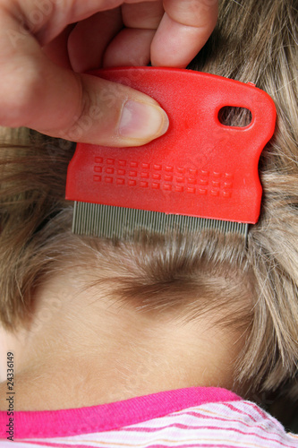 Leinwanddruck Bild Kopfläuse