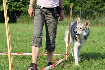 Wolfgang im Training