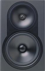 Audio speaker. XXL