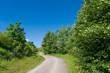 Weg in sommergrüner Landschaft