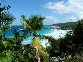 Way to Anse Coco La Digue