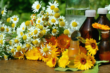 Medical calendula and camomille