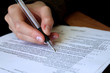 review and filling out legal contract - 24351382
