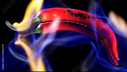 Burning hot Chilli pepper with flame on black mirror background