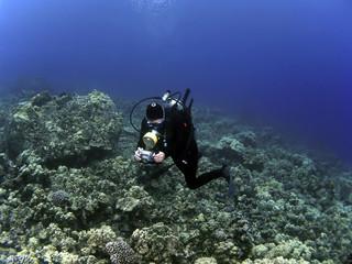 Woman Underwater Photographer Scuba Diving in Kona Hawaii