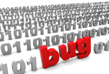 bug in binary code