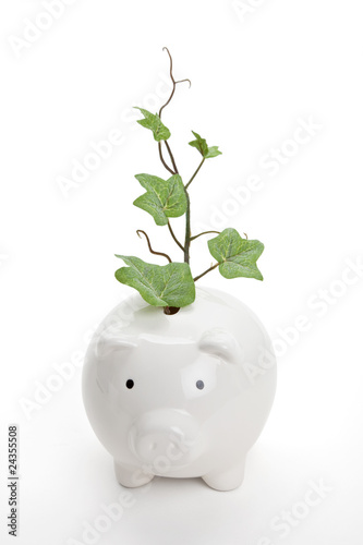 Piggy bank and plant