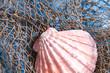 Leinwanddruck Bild - Seashell on fishing net