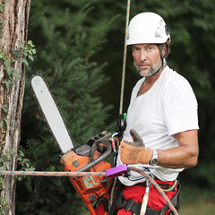 Baum Doktor