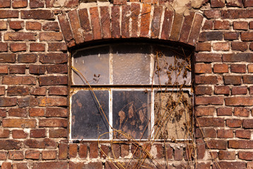 Old brick wall and window