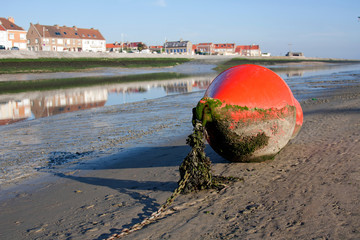 Bouy lying on the coast