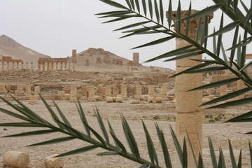 In Palmyra