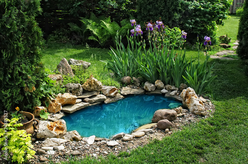 small pond in the garden - 24385527