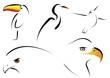 Conjunto de aves estilizadas