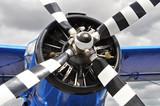 Fototapety Vintage propeller plane