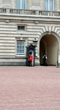Guardia a Buckingham Palace a Londra