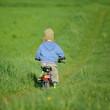 radfahrendes Kind in Wiese