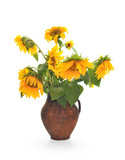 Withering sunflowers in a jug poster