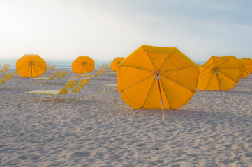 Umbrellas in Miami