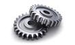 Two gear wheels