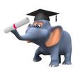 3d Elephant graduates