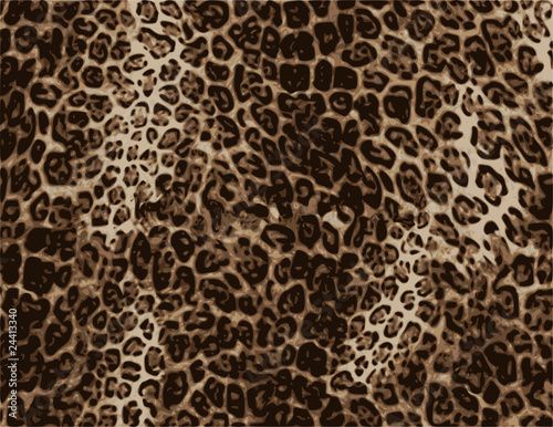 """wild African animal skin texture"" Stock image and royalty ..."