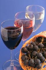 Trio de vins - fond bleu