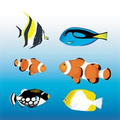 海の魚 トロピカルフィッシュ
