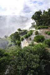 Green Iguazu waterfalls in Argentina