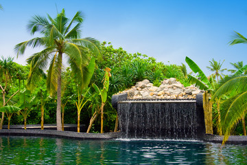 Maldives. .Pool with small fall in tropical garden...