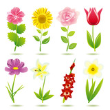 Fototapety Flower icons set