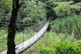 hanging-bridge-central america