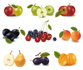 Group of different tasty ripe fruit. Vector.
