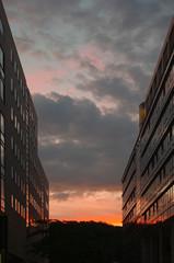 Bürogebäude im Mediapark in Köln