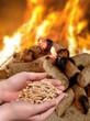 Hand mit brennenden Holzpellets, Feuer und Glut - 24461180