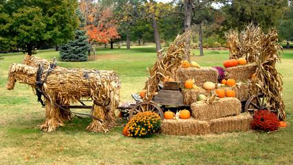 Autumn Display