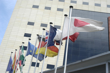 Banderas 43