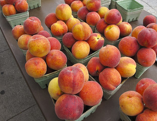 Organic Peaches on sale at outdoor farmers market