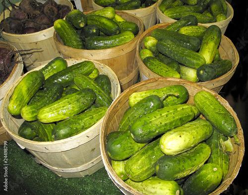 Pickling Cucumbers at Farmers Market
