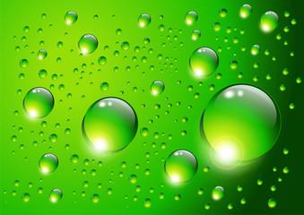 Water drops vector background.