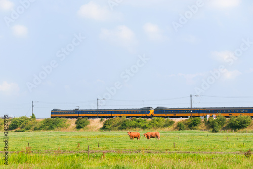 Dutch train in landscape