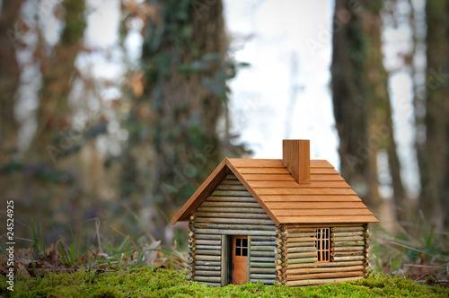petite maison cologique tout bois photo libre de droits sur la banque d 39 images. Black Bedroom Furniture Sets. Home Design Ideas