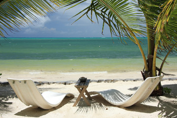 Duo romantique aux Seychelles, transats sous les cocotiers