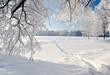 Leinwandbild Motiv Winter park in snow