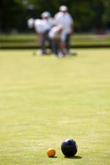 Lawn Bowls - Narrow Depth of Field - Focus on Wood