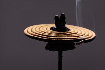 Incense coil burning slowly