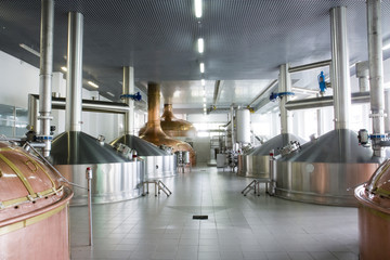 brewery workshop with copper and stainless fermentation vats