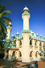 Minarets of a mosque surrounded by palm leafs